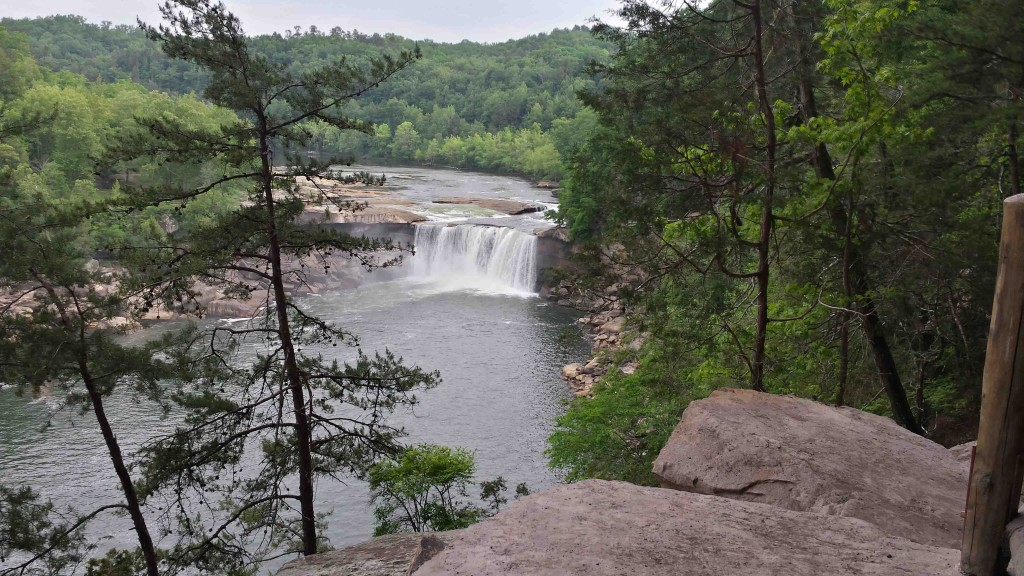 View of Cumberland Falls from Trail #9