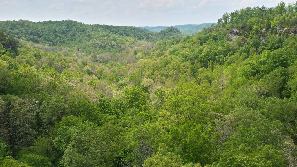 Dry Creek Overlook South 5/6/15