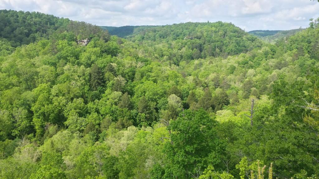 Three Forks of Beaver Panoramic View 5-12-15
