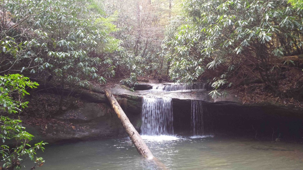 Pounder Branch Falls #1
