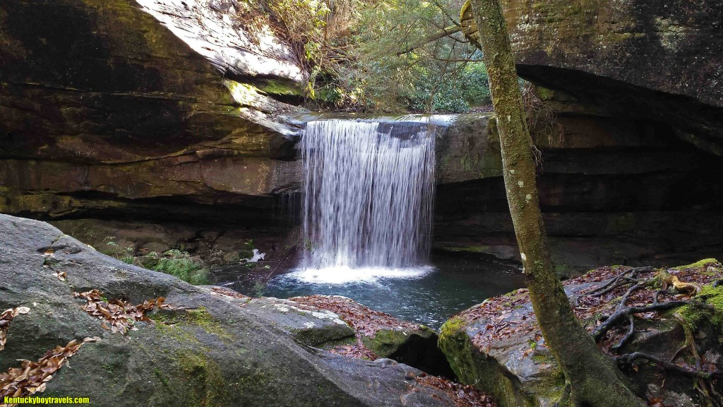Dog Slaughter Falls Two 1-21-15