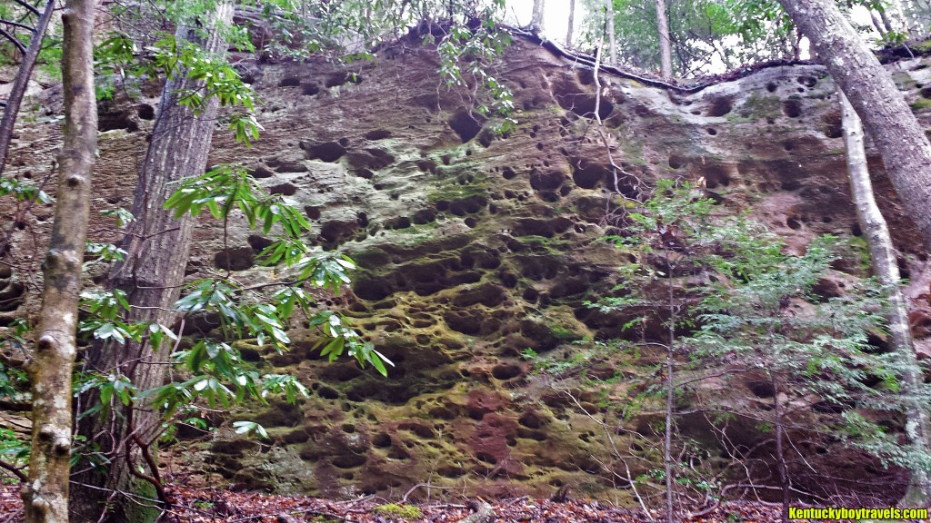 Pitted Cliffs on the East Wall 12-26-15