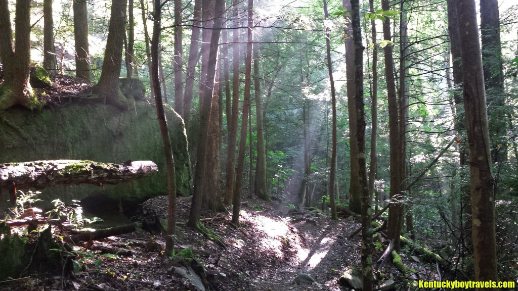 Dog Slaughter Trail on 7-16-16