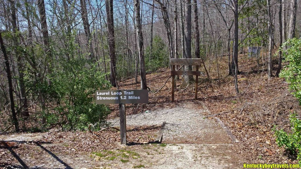 Laurel Loop Trail Sign 4-3-16