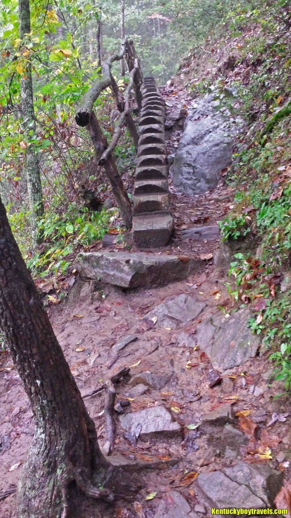 Steps carved into a log on Spruce Flats Falls Trail 10-10-16