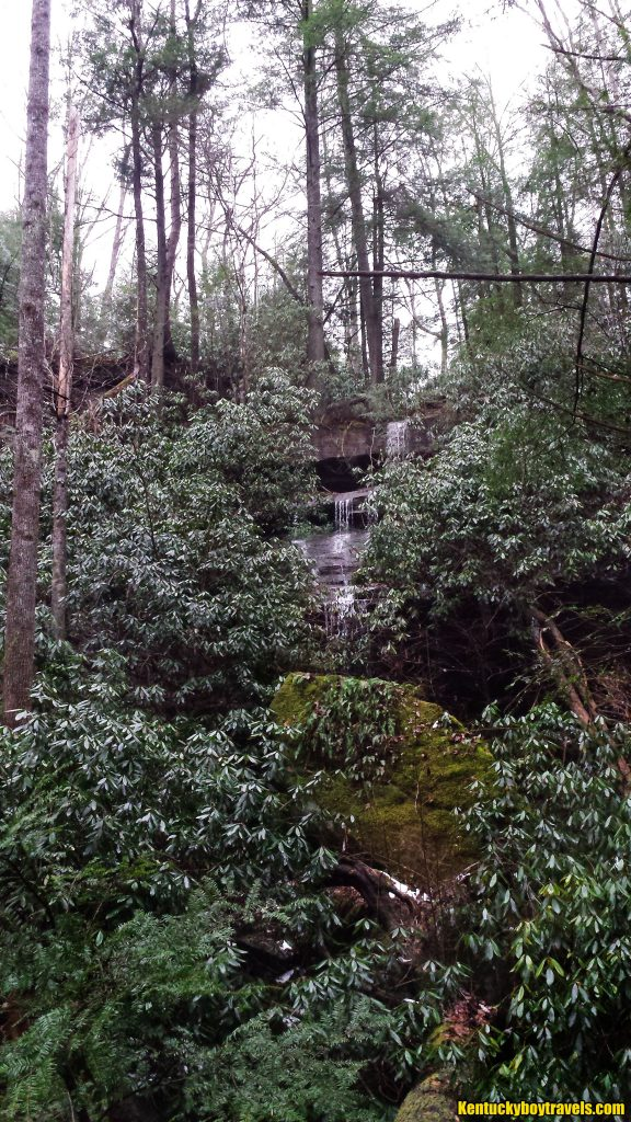 Sublimity Springs Tributary Falls from afar 2/1/16