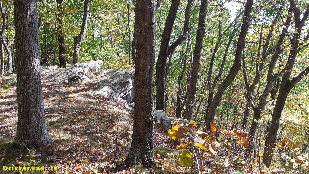 on-ridge-trail-cumberland-gap-10-16-16