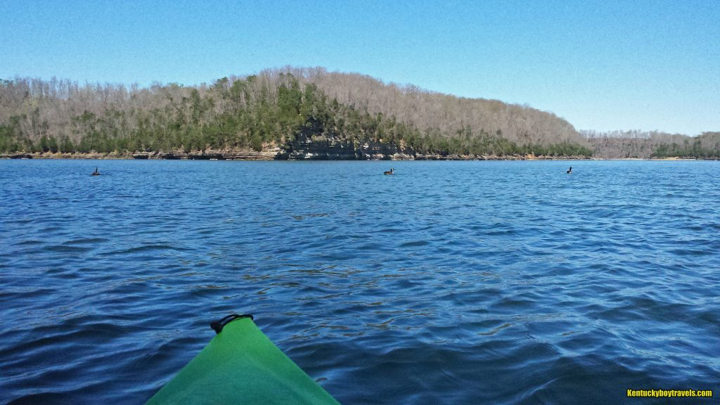 Lake cumberland fishing creek bmj fishing bear creek for Lake cumberland fishing